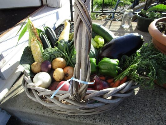 Vegetable basket at Goshen Farmers' Market